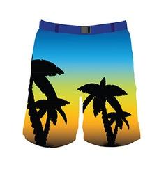 Man shorts vector image