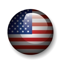 united states of america button emblem vector image