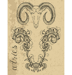 aries or ram zodiac sign vector image