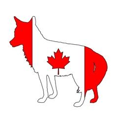 Coyote Canada vector