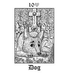 dog tarot card from lenormand gothic mysteries vector image
