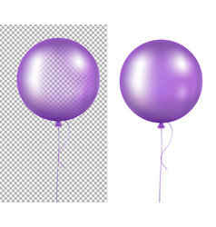 lilac balloons vector image