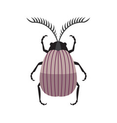 Scarab beetle icon in simple flat design vector