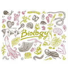 Scientific laboratory in biology icon set of vector