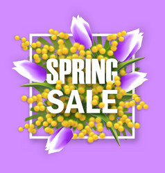 Spring sale square banner with mimosa vector
