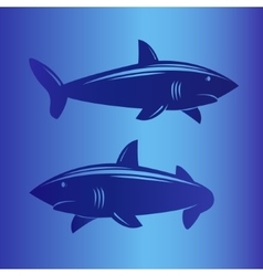 Two sharks in deep blue sea vector