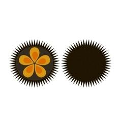 Sea urchin flat icon logo aquatic natural food vector