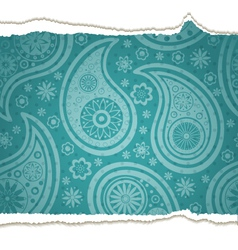 Ripped paisley paper vector image