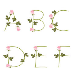 Floral alphabet Pink roses from A to F vector image