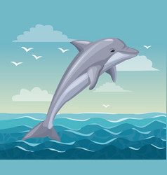 colorful poster seaside with dolphin mammal in vector image