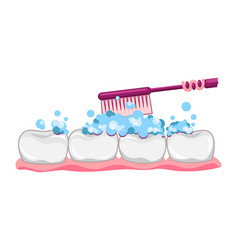Cute tooth with toothbrush and toothpaste vector