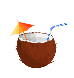 half coconut on white vector image