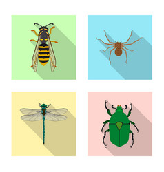 Insect and fly symbol vector