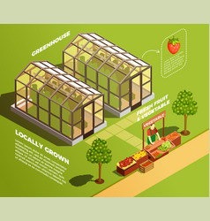 Isometric farm background vector