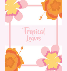 tropical leaves flowers petal decoration banner vector image