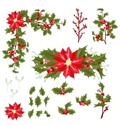 Christmas berry flower vector image