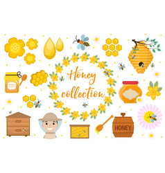 honey collection beekeeping set of objects vector image vector image