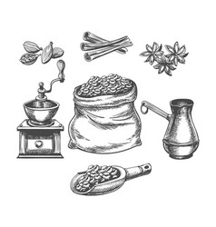 coffee pot grinder vector image