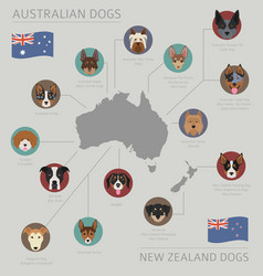 Dogs country origin australian dog breeds vector