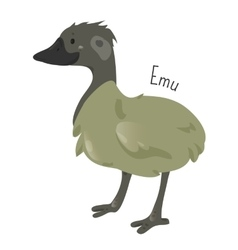 Emu isolated on white Cartoon character vector image