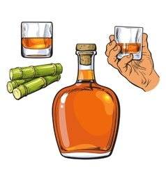 Rum bellied bottle hand holding shot glass and vector