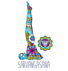 Sarvangasana or candle pose vector
