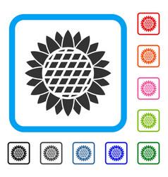 sunflower flower framed icon vector image