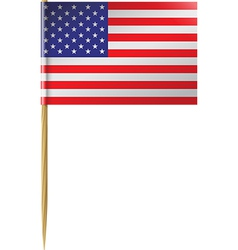 USA Flag Toothpick vector image