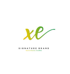 X e xe initial letter handwriting and signature vector