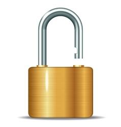 open padlocks vector image