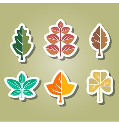 color icons with different leaves vector image vector image