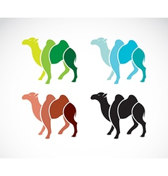 image of an camel design vector image vector image