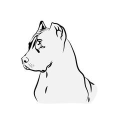 American pit bull svg terrier svg files vector