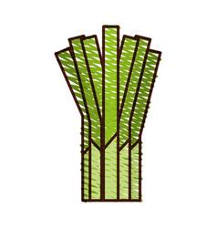 Branch onion fresh vegetable icon vector