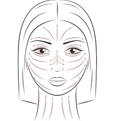 Female face Massage lines vector