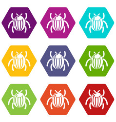 garden beetle bug icons set 9 vector image