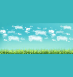 green meadow and blue sky realistic banner vector image