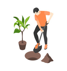 planting tree vector image