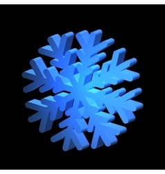 Relief snowflake for various design vector image