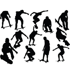 Skateboard collection vector