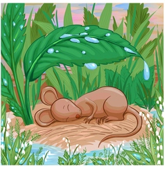 sleep mouse vector image