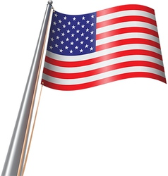US Flag on Pole vector image vector image