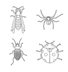 Design of insect and fly symbol collection vector