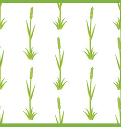 fresh grass seamless pattern vector image