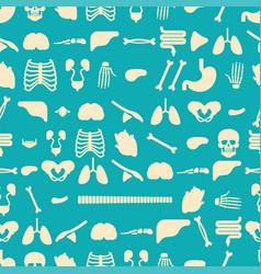 Human anatomy pattern seamless skeleton and vector