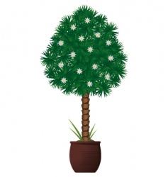 Interior plant vector