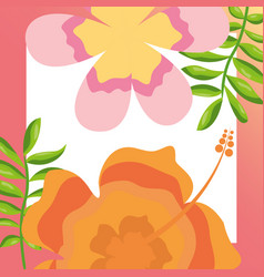 tropical leaves hibiscus flower branches natural vector image