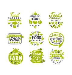 hand drawn gray and green organic healthy food vector image vector image