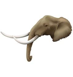 A head of an elephant vector