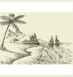 Hand drawing a beach palm trees and rocky vector